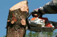 free Southall tree removal quotes