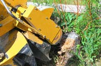 Southall tree stump grinding services