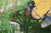 free Southall tree stump grinding quotes